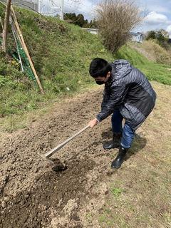畑作業3.JPG